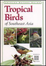 Tropical Birds of Southeast Asia