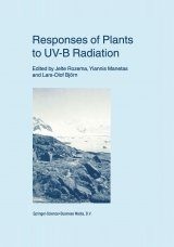 Responses of Plant to UV-B Radiation