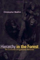 Hierarchy in the Forest