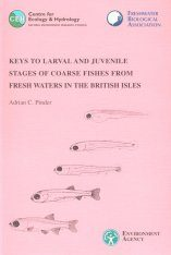 Keys to Larval and Juvenile Stages of Coarse Fishes from Fresh Waters in the British Isles
