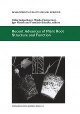 Recent Advances of Plant Root Structure and Function