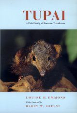 Tupai: A Field Study of Bornean Treeshrews