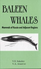 Baleen Whales