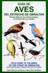 Field Guide to the Birds of the Strait of Gibraltar / Guia de Aves del Estrecho de Gibraltas