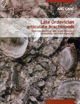 Late Ordovician Articulate Brachiopods from the Red River and Stony Mountain Formations, Southern Manitoba