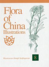 Flora of China Illustrations, Volume 8