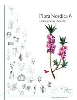 Flora Nordica, Volume 6: Thymelaeaceae - Apiaceae [English]