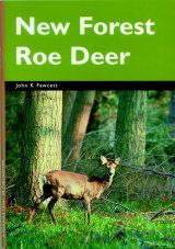 New Forest Roe Deer