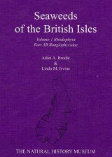 Seaweeds of the British Isles, Volume 1 Part 3b