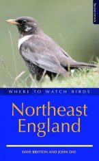 Where to Watch Birds in Northeast England