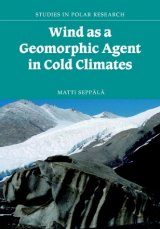 Wind as a Geomorphic Agent in Cold Climates