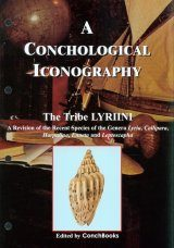 A Conchological Iconography: The Tribe Lyriini