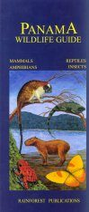 Panama Wildlife Guide: Mammals, Reptiles, Amphibians, Insects [English / Spanish]
