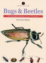 Identifying Bugs and Beetles