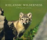 Icelandic Wilderness: A Photographic Journey