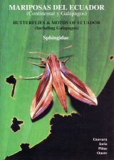 Butterflies & Moths of Ecuador (Including Galapagos) / Mariposas del Ecuador (Continental y Galápagos), Volume 17A