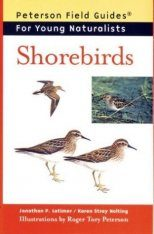 Peterson Field Guide for Young Naturalists: Shorebirds