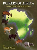 Duikers of Africa: Masters of the African Forest Floor