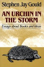An Urchin in the Storm