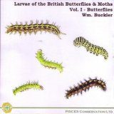 Larvae of the British Butterflies & Moths: Volume 1 - Butterflies