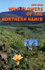 Wild Flowers of the Northern Namib
