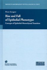 Rise and Fall of Epithelial Phenotype