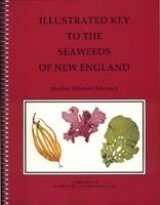 Illustrated Key to the Seaweeds of New England