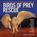 Birds of Prey Rescue