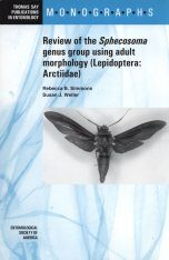 Review of the Sphecosoma Genus Group Using Adult Morphology (Lepidoptera : Arctiidae)