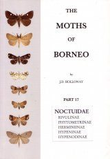 The Moths of Borneo, Part 17