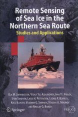 Remote Sensing of Sea Ice in the Northern Sea Route