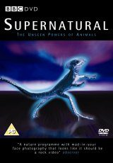 Supernatural - DVD (Region 2)