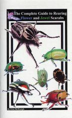 The Complete Guide to Rearing Flower and Jewel Scarabs