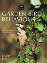 Garden Bird Behaviour