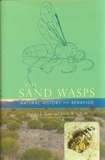 The Sand Wasps