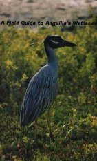 A Field Guide to Anguilla's Wetlands