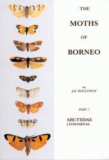 The Moths of Borneo, Part 7