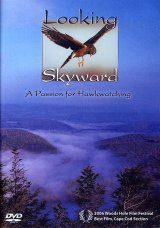 Looking Skyward (Region 1)