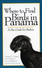 Where to Find Birds in Panama