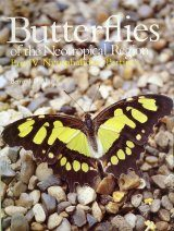 Butterflies of the Neotropical Region, Part 4