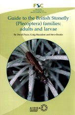Guide to the British Stonefly (Plecoptera) Families: Adults and Larvae