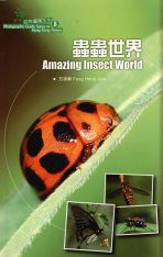 Amazing Insect World
