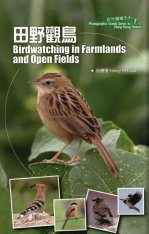 Birdwatching in Farmlands and Open Fields