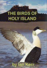 The Birds of Holy Island