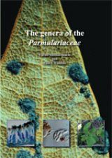The Genera of the Parmulariaceae