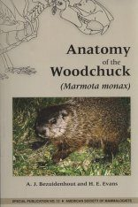 Anatomy of the Woodchuck
