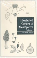 Illustrated Genera of Ascomycetes: Volume 1