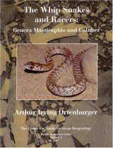 The Whip Snakes and Racers