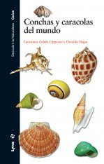 Conchas y Caracolas del Mundo [Sea Snails and Sea Shells of the World]