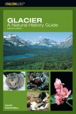 Glacier: A Natural History Guide